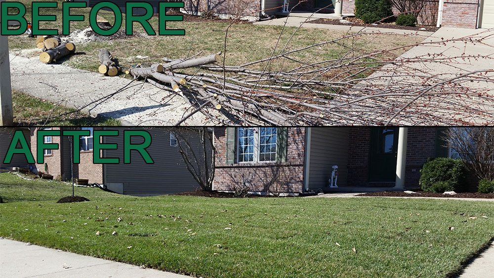 tree removal yard grading sod sodding planting mulching Landscaping Jolly Lawncare in Columbia MO Before and After