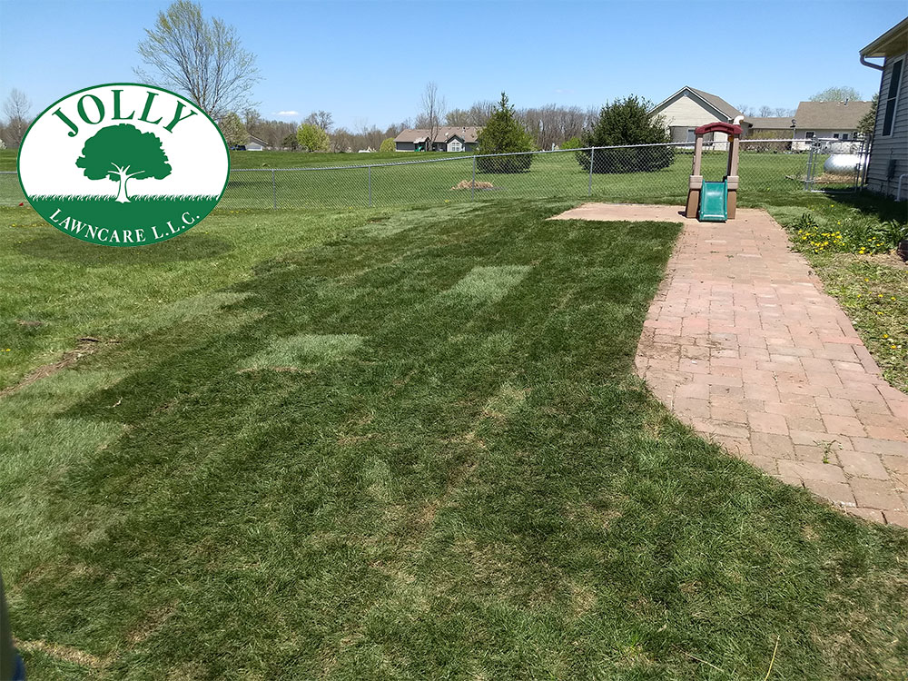 Regrading a Yard adding Grass Sod Rejuvinate Refresh Back Yards Lawn Ughly to Beautiful Fresh Landscape Jolly Lawncare and Landscaping in Columbia Missouri MO
