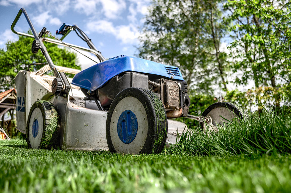 Step 4 : Mow High in Missouri Spring. Just Trim the Grass to promote a Healthy Lawn recommended by Jolly Lawncare and Landscaping in Columbia