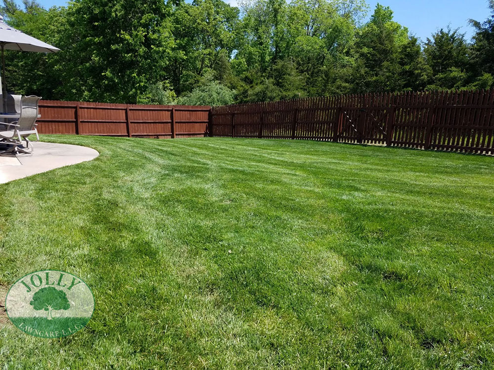 French Drain Removes Standing Water against house Foundation and Footing Cracks Leaks Settling and saves privacy fence Jolly Lawncare Landscaping in Columbia MO web